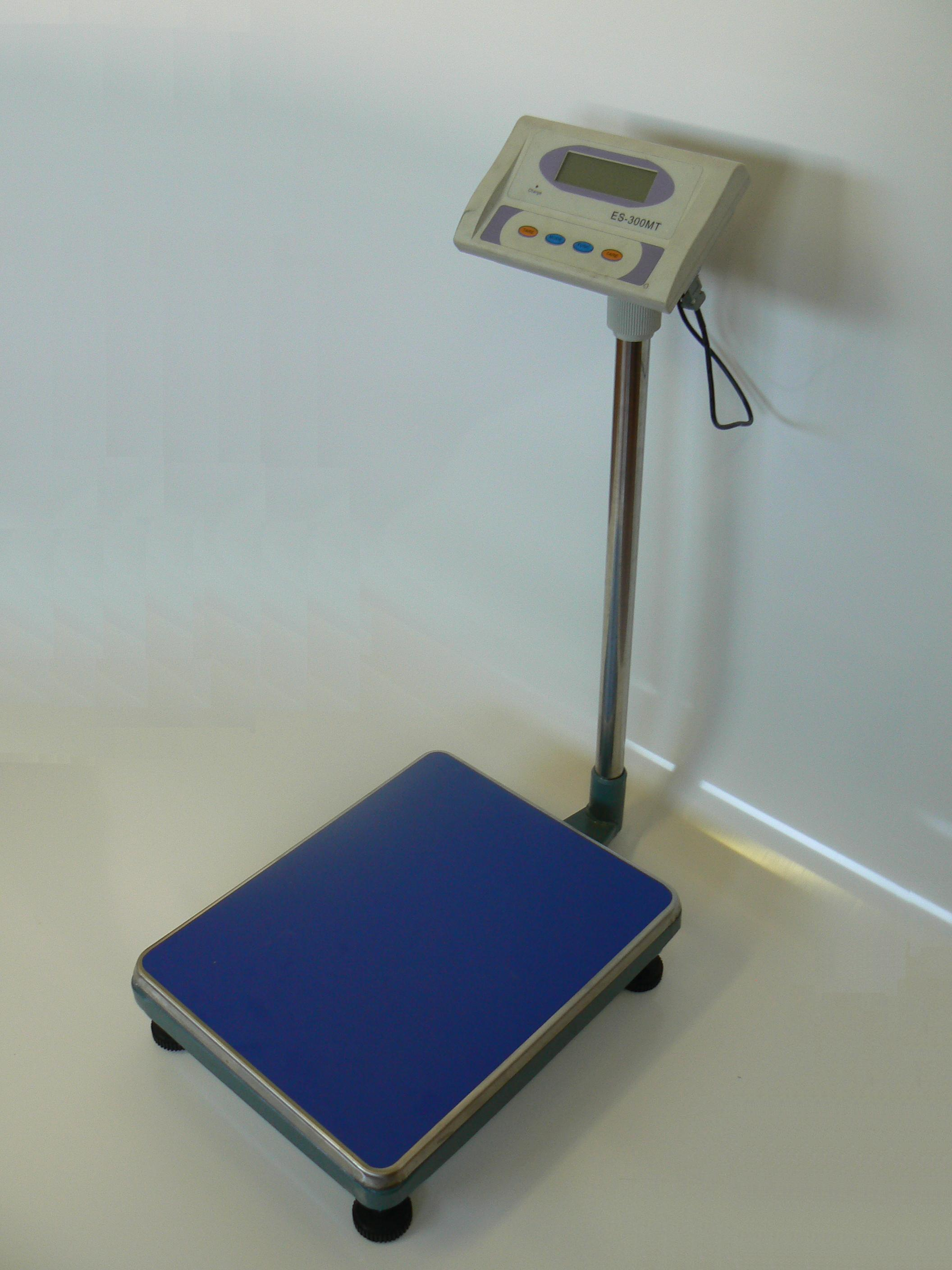 Bench Press Scale 28 Images Bench Scales Uk 28 Images Check Weigher And Bench Scales